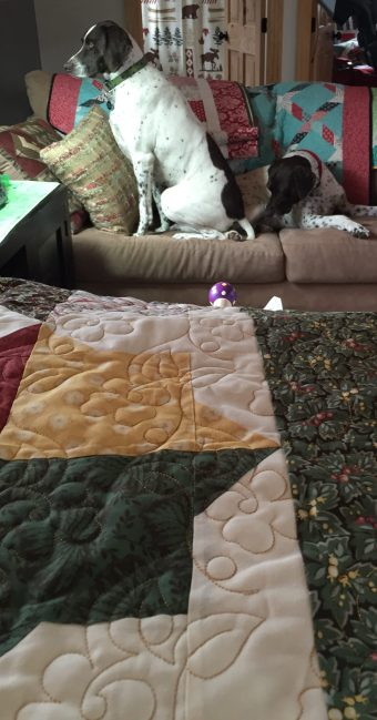 Quilts are always better with dogs