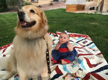 Finley and Dolce on the 4th of July Quilt